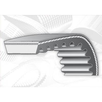 Cinghia variatori sezione 37 x 10  x 1600 - lunghezza nominale 1650 mm